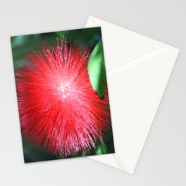 Flower No 1 Stationery Cards