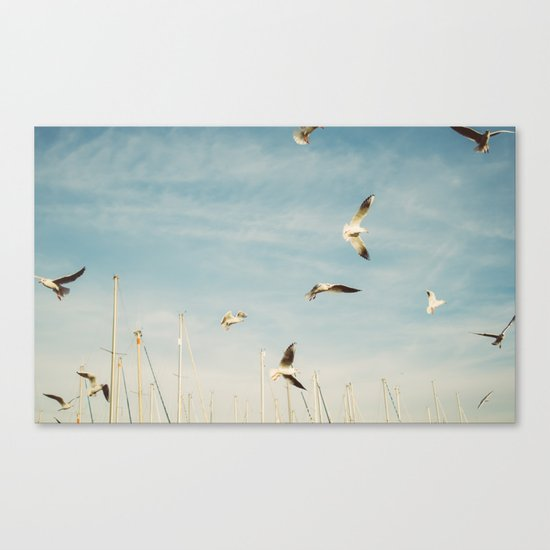 Seagulls Flying In The Sky Canvas Print