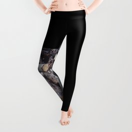 Another Log on the Pile Leggings