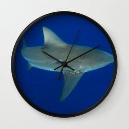 Bull Shark Wall Clock