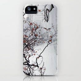 Plane Tree Branches Hanging Over Lake iPhone Case