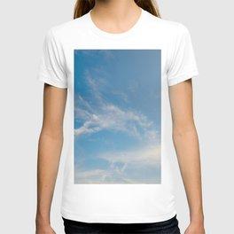 Hummingbird Cloud by Teresa Thompson T-shirt