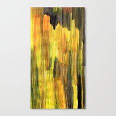 remnant 014 Canvas Print