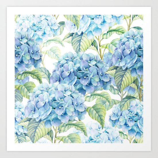 Blue Hydrangea by julianarw