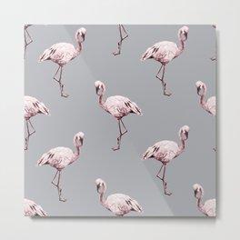 Simply Flamingo on Concrete Gray Metal Print