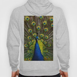 Colorful peacock Hoody