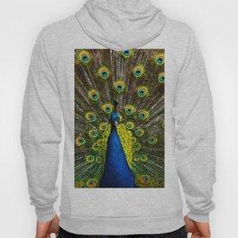 Colorful peacock Hoody