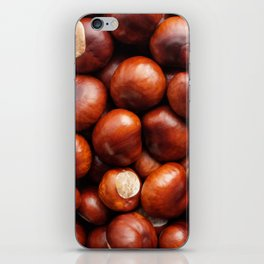 Shiny conkers iPhone Skin