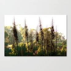 But You Should Have Seen It Earlier! Canvas Print