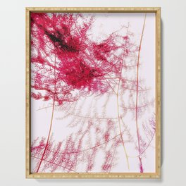 Asparagus Fern Abstract Serving Tray