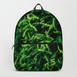 Botanical Gardens - Evergreen #939 Backpack