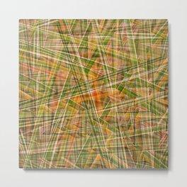 MISCANTHUS GRASS MORNING LIGHT Metal Print