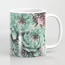 Succulent Sempervivum Plants Coffee Mug