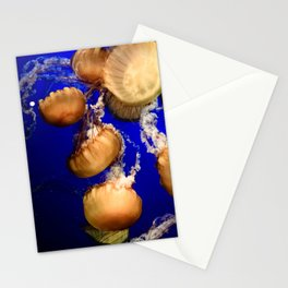 Sea Nettle Group Stationery Cards