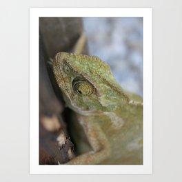 Wild Chameleon In Green Shades Art Print