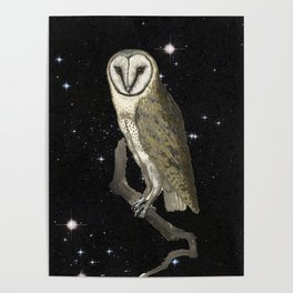 Owl in the Universe Poster