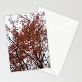 A tree in the fall. Stationery Cards