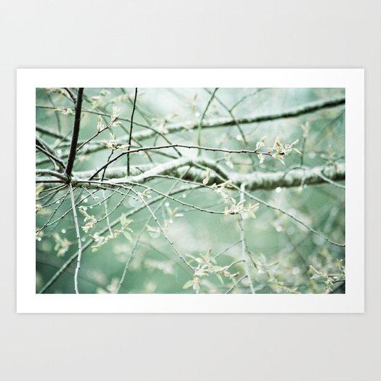 bright branches Art Print
