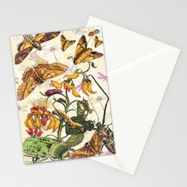 Insect Life Stationery Cards