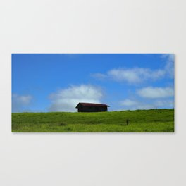 All Alone On The Hill Canvas Print