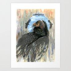 California Condor Art Print