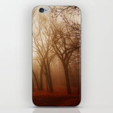 red earth iPhone Skin