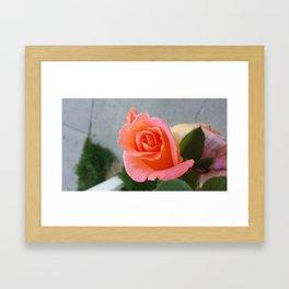 peace offering Framed Art Print
