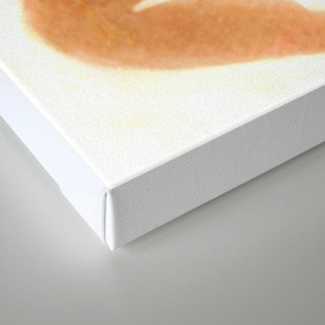 """""""Une chèvre mange..."""" Book cover Canvas Print"""