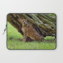 Wild Cheetah Laptop Sleeve