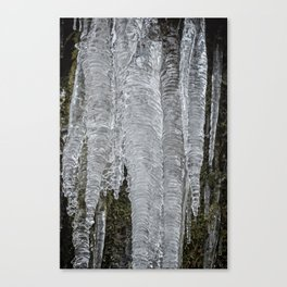 Icicles, No. 2 Canvas Print