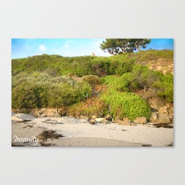 Insanity Photography Canvas Print