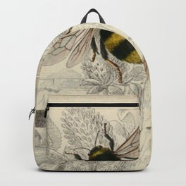 Naturalist Bee And Wasps Backpack