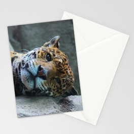 Sleepy Stationery Cards