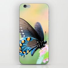 Spicebush Swallowtail Butterfly on Lantana iPhone Skin
