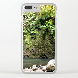lime green waterfall Clear iPhone Case
