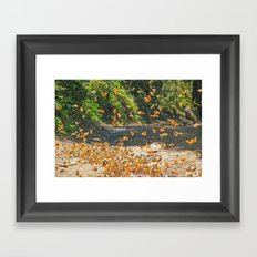 FLIGHT PATH Framed Art Print