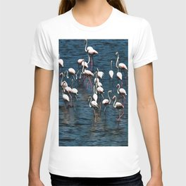 Flamingo Birds In Pink and White On Blue T-shirt