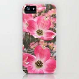 quixotic pink dogwood iPhone Case