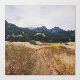 Golden Malibu Canvas Print