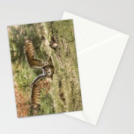 Eagle Owl In Flight Stationery Cards