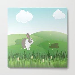 Dutch rabbit in field Metal Print