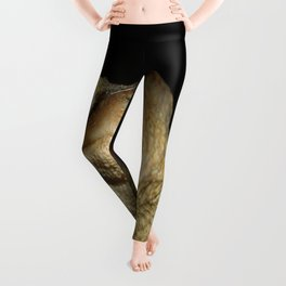 Common European Toad, Bufo Bufo Leggings