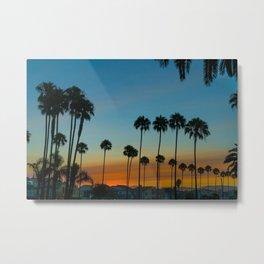 Balboa Palms at Sunrise Metal Print