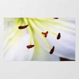 White Easter Lily Close Up Rug