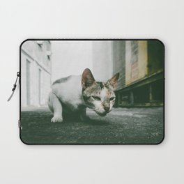 Street Cat Laptop Sleeve