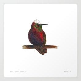 Snowcap Art Print