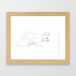Lynx  Framed Art Print