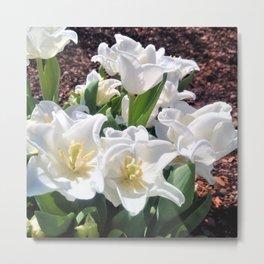 Creamy White Meringue Flowers Metal Print