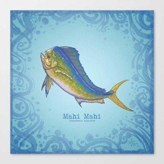 Mahi Mahi ~ Coryphaena hippurus Canvas Print