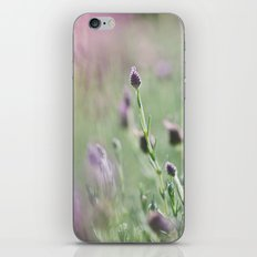 lavender summer iPhone & iPod Skin